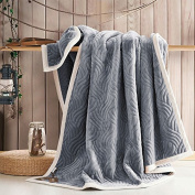 CLG-FLY Blankets, thick double winter sheets blankets blanket twin,150x200cm 4.8 kg weight,Silver grey