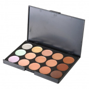 15 Colours 3D Radiance Concealer Makeup Palette Kit