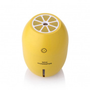 Alonea Portable USB Humidifier Air Purifier Steam Diffuser Mist Office Room