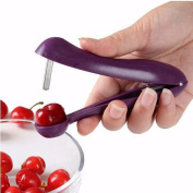 Ecloud Shop® Salad Tools Cherry Clips Salad Tools Remove nucleus Cherry and Olive Pitter Stone Seed Remover