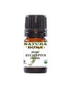 Eucalyptus Essential Oil Globulus Organic, 5ml. Therapeutic Grade 100% Pure Eucalyptus Oil