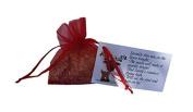MAGIC BAG OF SPRINKLE REINDEER FOOD OATS DUST CHRISTMAS EVE SANTA FUN ACTIVITY