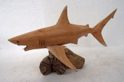 Unusual Hand Carved Great White Shark on Parasite Wood Bali wood Shark Carving 30cm