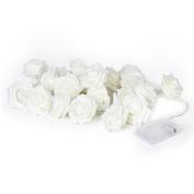 ROSENICE 20 LED Battery Operated Rose Flower String Lights Wedding Garden Christmas Decor 2.2M