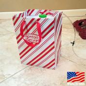 New 2016! Santas Secret Gift - Automatic Christmas Tree Waterer