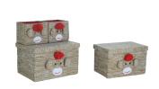 Bintopia Fabric Box Set, Monkey