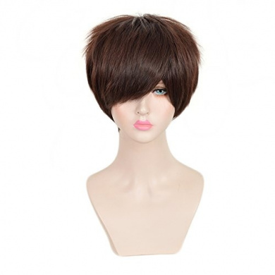 SiYi Men's Free Hair Cap Attack on Titan Eren Jaeger Dark Brown Short Anime Cosplay Wig