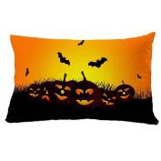 Beautyvan 3050cm Soft Halloween Square Pillow Cover Cushion Case Zipper Closure