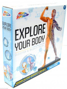 Explore Your Body Build & Learn Human Anatomy Kit Skeleton & Muscle Model New