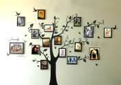 Rainbow Fox Large Black Photo Frames 16 Frames Memory Tree Photo Tree Wall Vinly Decal Decor Sticker Removable Wall Decal for Living Room (180cm*250cm)