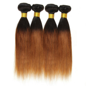 Babe Hair Silky Straight 4 Bundles 7A 100g/pc Ombre Brazilian Human Hair Weave Extensions Black and Auburn 2 Tone 1B/30, 410ml Set
