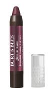 Burt's Bees Natural Moisturising Lip Crayon, Bordeaux Vines, 5ml