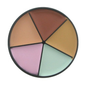 All Around Cover Concealer Wheel