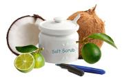 Florida Salt Scrubs, Your Official Salt Scrub Jar