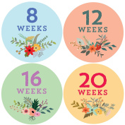 Design Corral Pregnancy Belly Stickers
