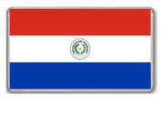 Flag of Paraguay fridge magnet