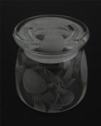 Hand Etched Vibe Storage Jar 360ml Permanently Sandblasted (Sand Carved) Glass Mystical Fairy Mushrooms Handmade USA