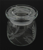 Hand Etched Vibe Storage Jar 360ml Permanently Sandblasted (Sand Carved) Glass Dragonfly Grass Handmade USA