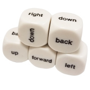 Set of 5 Educational Dice 6 Sided Helping Directions 16mm White in Snow Organza Bag