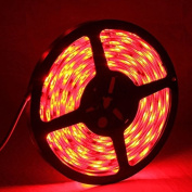 String Lights , 5050 SMD Epoxy Waterproof Red LED Light Strip with 12V 5A Power Supply, 30 LED/m and Length