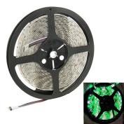 String Lights , 5050 SMD Epoxy Waterproof RGB LED Light Strip, 60 LED/m and Length