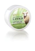Lanolin Lip Balm (small 15grm)