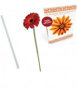 "Gerbera Daisy Floral Arranging Straws Tubes 3/8"" x 8"" Plus FREE Flower Crafting Tools eBook Bundle"