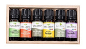 Plant Therapy Top 6 USDA Certified Organic Essential Oils Set. Includes