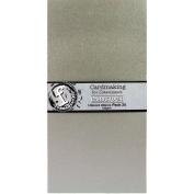 Fundamentals Cardmaking Unscored Cardstock 14cm x 28cm 20/Pkg-Silver