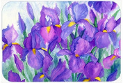 "Caroline's Treasures IBD0256CMT ""Purple Iris"" Kitchen or Bath Mat, 20"" H x 30"" W, Multicolor"
