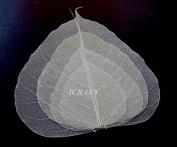 100 Assorted Size 7.6cm 10cm 15cm 18cm Skeleton Natural Ficus Religiosa Leaves Artificial Leaves Craft Card Scrapbook Diy Handmade Embellishment Decoration Art