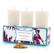 Seda France Classic Toile Votive Candles, Japanese Quince, 60ml