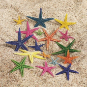 Natural Dyed Starfish [Toy] by Fun Express