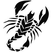 Scorpion Star - Animal Decal [12cm Black] Vinyl Sticker for Car, Ipad, Laptop, Helmet