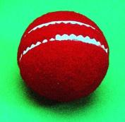 Allplay Cricket Sports Match Ball