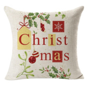 Emubody 2017 Christmas Decorative Cushion Pillow Cover Pillowcase