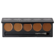 Ultimate Foundation 5-in-1 PRO Palette, 500b Series™
