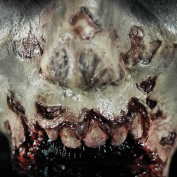 Tinsley Transfers ZOMBIE MISSING JAW - Film Quality Realistic 3D Prosthetic Makeup FX Transfer. Apply With Water.