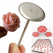 Grocery House DIY Sugarcraft Rose Flower Tool Icing Cream Stand Nail