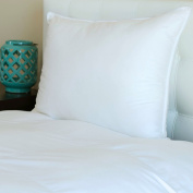 Silky Soft 400 TC Sateen Cotton White Hypoallergenic Primaloft Luxury Down Alternative Pillow - Sold Individually