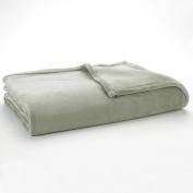 The Big One Plush Blanket (King,Sage) Super Soft Microplush Oversized Blanket