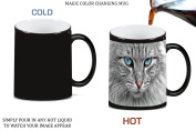 Cat Lover Kitten Kitty Whiskers Blue Eyes Cute Face Magic Colour Changing Ceramic Coffee Mug Tea Cup by Moonlight Printing