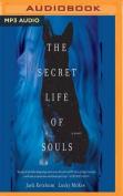 The Secret Life of Souls [Audio]