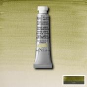 Winsor & Newton Artist Professional Watercolour Paint - 5ML Tube (Terre Verte