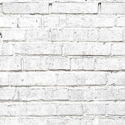 Savage Printed Background Paper, 180 gsm, 7.6 mil, 130cm x 5.5m, White Brick