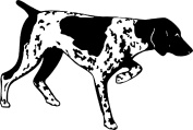 Dog Pointer Rubber Stamps custom stamps rubber