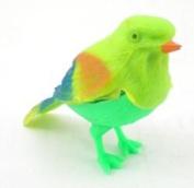 Chirping Bird Toy One Piece