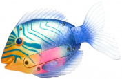 Swimways Rainbow Reef Magic-Action Mini Trigger Fish