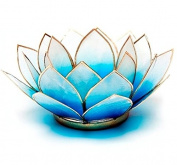 Find Something Different Light Blue Capiz Shell Lotus Tea Candle Light Holder, Bamboo, Multi-Colour