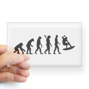CafePress - Evolution surfing Sticker (Rectangle) - Rectangle Bumper Sticker Car Decal